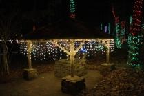 Christmas At The Falls '17 (61)