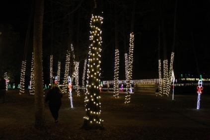 Christmas At The Falls '17 (64)