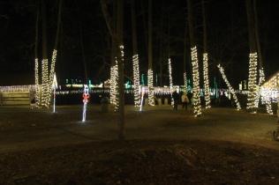 Christmas At The Falls '17 (65)