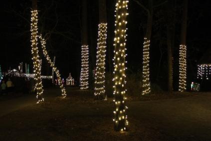 Christmas At The Falls '17 (67)