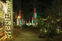 Christmas At The Falls '17 (7)
