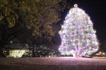Christmas Light Pics 2017 (7)