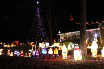 Gaddy's Light Display '17 (15)