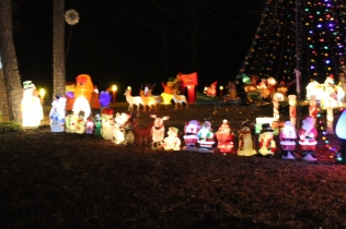 Gaddy's Light Display '17 (21)