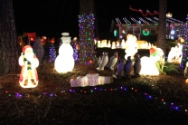 Gaddy's Light Display '17 (30)
