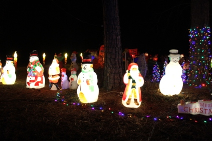 Gaddy's Light Display '17 (31)