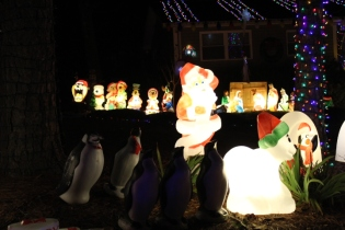 Gaddy's Light Display '17 (33)