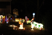 Gaddy's Light Display '17 (4)