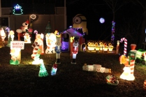 Gaddy's Light Display '17 (5)