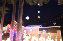 Gaddy's Light Display '17 (8)