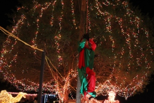 Gilley's Christmas Lights '17 (15)