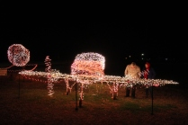 Gilley's Christmas Lights '17 (26)