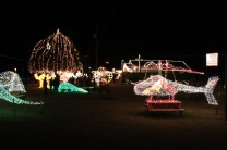 Gilley's Christmas Lights '17 (29)