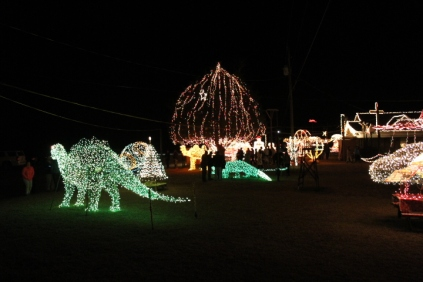 Gilley's Christmas Lights '17 (30)