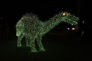 Gilley's Christmas Lights '17 (32)