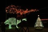 Gilley's Christmas Lights '17 (42)