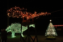 Gilley's Christmas Lights '17 (42)