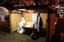 Gilley's Christmas Lights '17 (6)