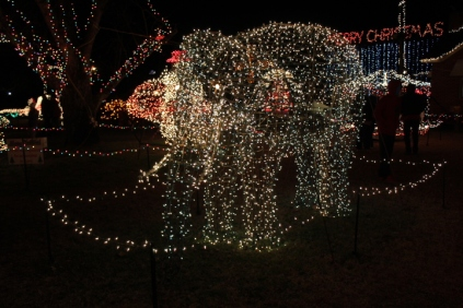Gilley's Christmas Lights '17 (8)