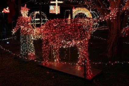 Gilley's Christmas Lights '17 (9)