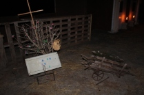 Greenbrier Road Nativity (5)