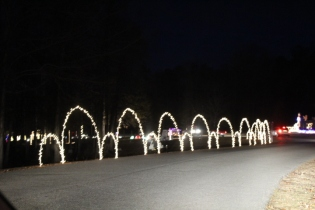 Pell City Lakeside Park Christmas '17 (11)