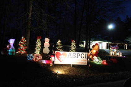 Pell City Lakeside Park Christmas '17 (31)