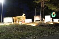 Pell City Lakeside Park Christmas '17 (35)