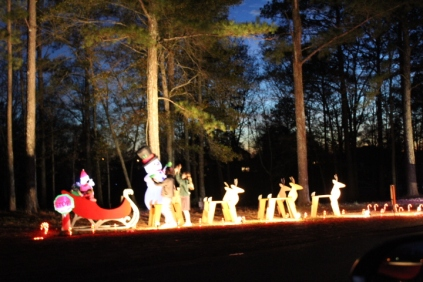 Pell City Lakeside Park Christmas '17 (45)