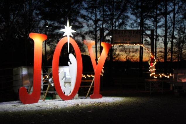 Pell City Lakeside Park Christmas '17 (48)