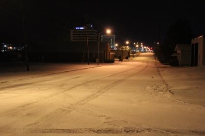Anniston 1-16-18 Snow (9)
