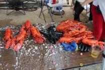 Lobsterfest 2018 (17)