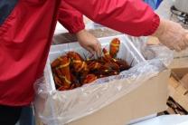 Lobsterfest 2018 (7)