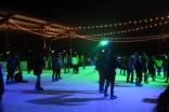 Birmingham Ice Skating '18 (9)