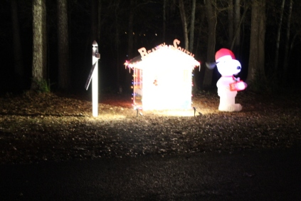 Christmas At Lakeside Park '18 (23)