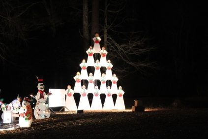 Christmas At Lakeside Park '18 (34)