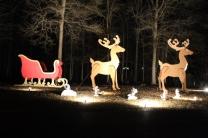 Christmas At Lakeside Park '18 (41)