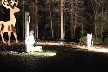 Christmas At Lakeside Park '18 (42)