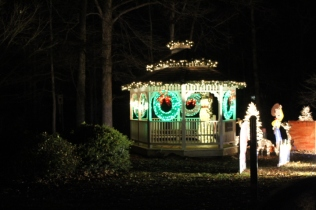 Christmas At Lakeside Park '18 (43)