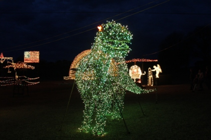Gilley's Christmas Lights 2018 (1)