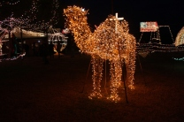 Gilley's Christmas Lights 2018 (13)