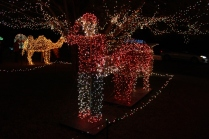 Gilley's Christmas Lights 2018 (26)