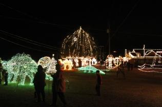 Gilley's Christmas Lights 2018 (43)