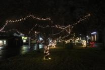 Quintard Median Christmas Lights 2018 (13)