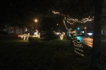 Quintard Median Christmas Lights 2018 (17)