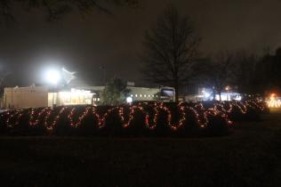 Quintard Median Christmas Lights 2018 (21)