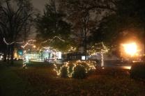 Quintard Median Christmas Lights 2018 (24)