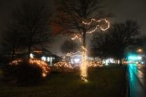 Quintard Median Christmas Lights 2018 (28)