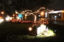 Quintard Median Christmas Lights 2018 (40)