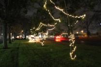 Quintard Median Christmas Lights 2018 (48)